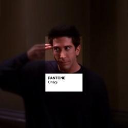 pantone-friends4