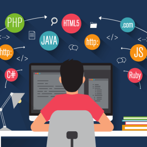 student computer programmer