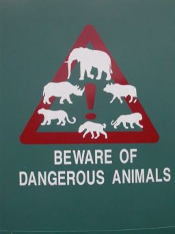 Beware of dangerous animals