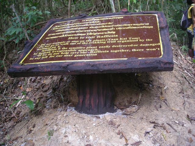 Panneau d'interprétation en béton, parc national de Khao Sok, Thaïlande
