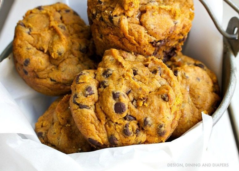 GF PUMPKIN CHOCOLATE CHIP MUFFINS