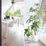Wohnung Mit Dachschrage Einrichten Design Dots