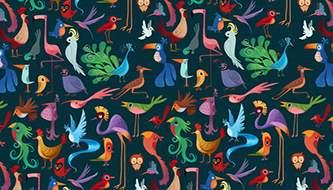 паттерны птиц