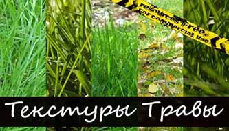 Подборка текстур травы высокого разрешения