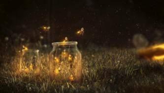 Как создать Светящихся светлячков, фотоманипуляция в Adobe Photoshop