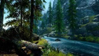 Захватывающий лес - HD обои для рабочего