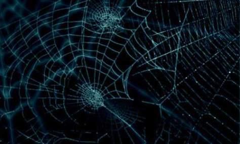 Щетки паутины