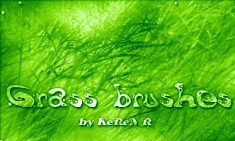 Своевременный набор кистей для фотошопа из травы