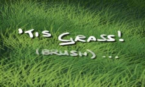 Хороший выбор Набор кистей для фотошопа из травы