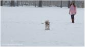 Winter Series Snow Play 5