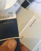 Benjamin Moore Paints Interior Design Decor Color Consultation