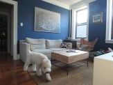 Living Room, DBK LIving Room, DBK at home, Jersey City Condo, small space, small living room, one room challenge, one room challenge spring 2016, one room challenge guest, orc guest participant, orc spring 2016, orc spring 2016 guest, contemporary living room, mod living room, before pictures, as is pictures, dbk orc, soft coated wheaten terrier, scwt at home, brantley bub
