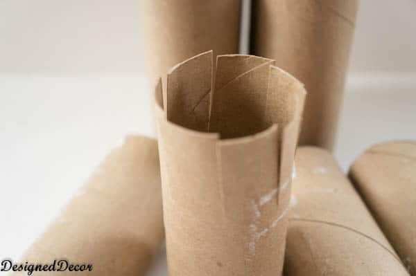 Toilet Paper Seed Starters-2