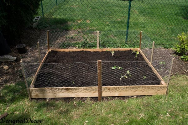 Building A Raised Garden Bed 11