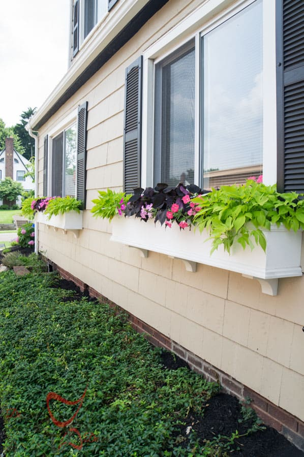 Window Boxes- Flower Boxes- How to add curb appeal