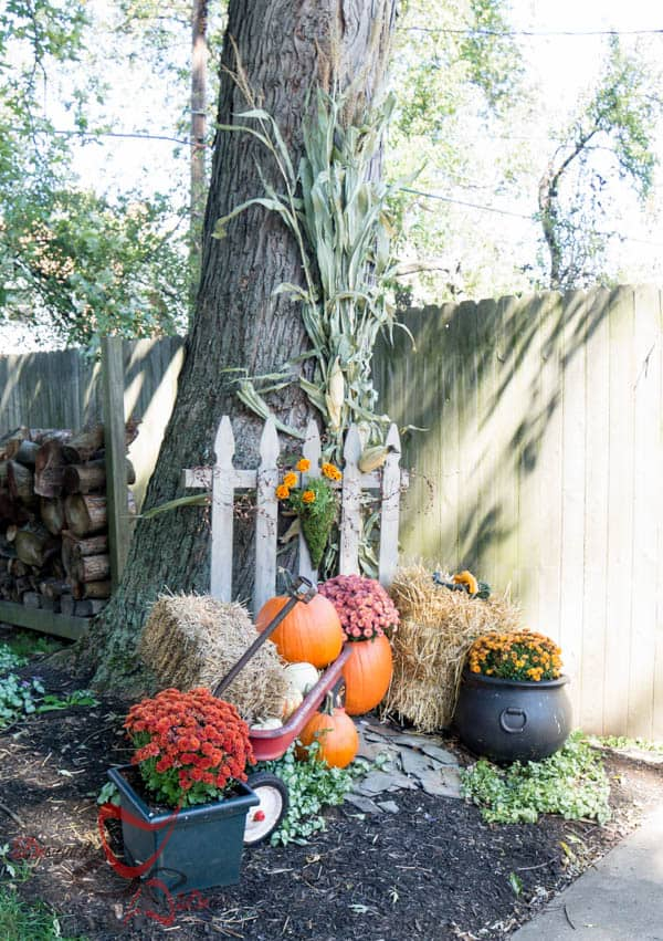 2014 Fall Home Decor- Quick and easy fall decorating