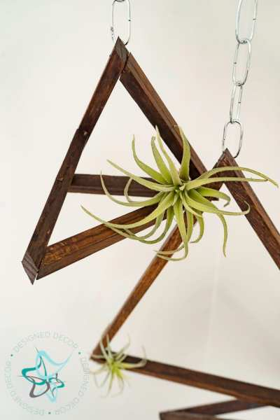 Simple to Make DIY Hanging Air Plant Holder