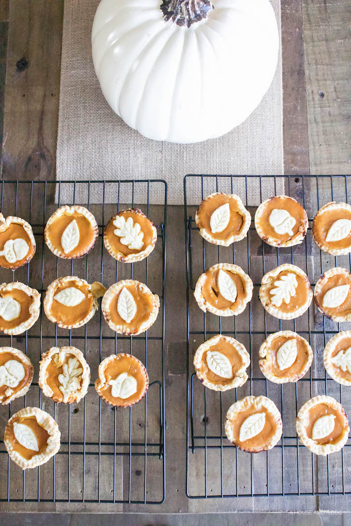 Easy Mini Pumpkin Pies | designedsimple.com
