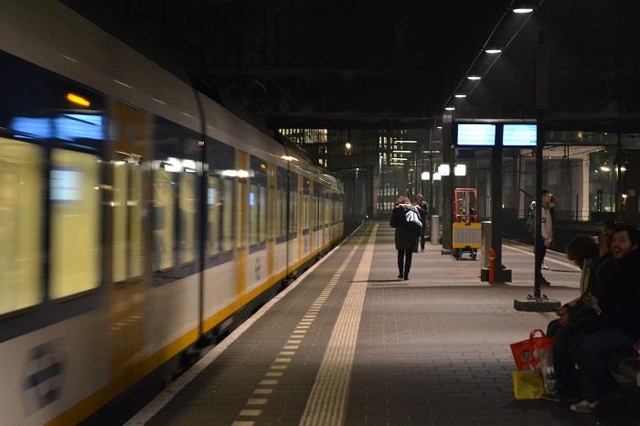Delegaţie în Olanda