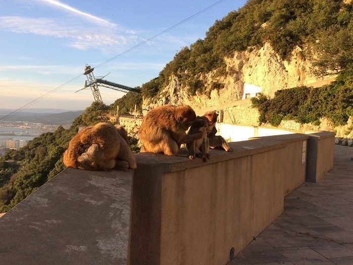 Andaluzia - Gibraltar