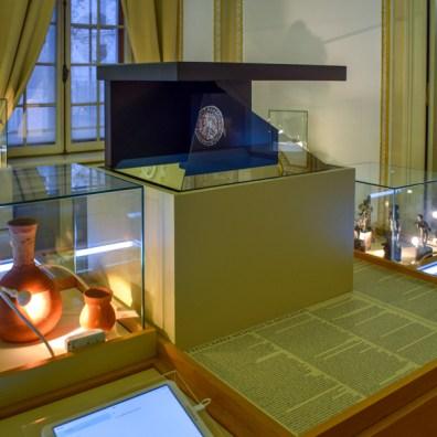 Cronicari digitali - Muzeul George Severeanu