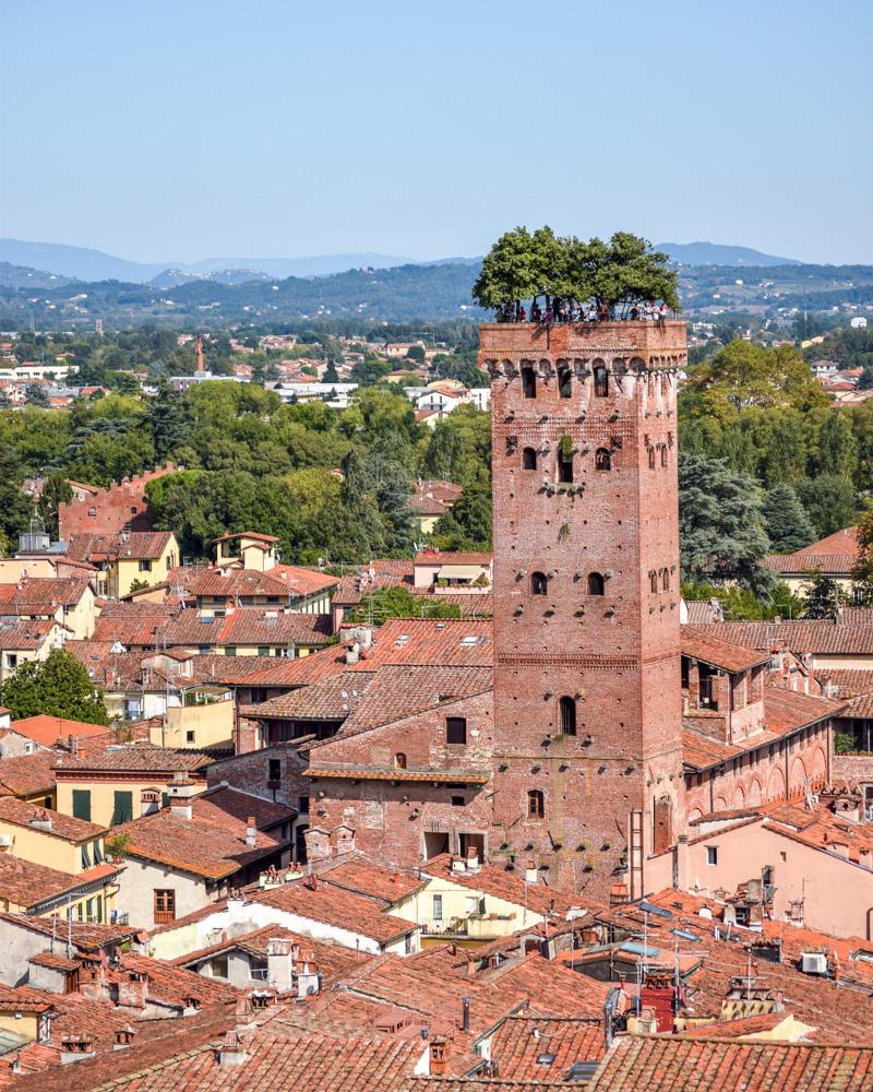 Cele mai instagramabile locuri din Toscana - Torre Guinigi, Lucca, Italia