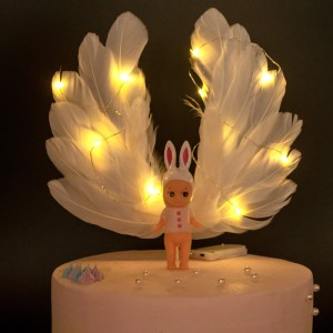 Light-Up Cake Toppers 带灯蛋糕装饰