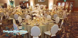 gold rim chairs wedding hire