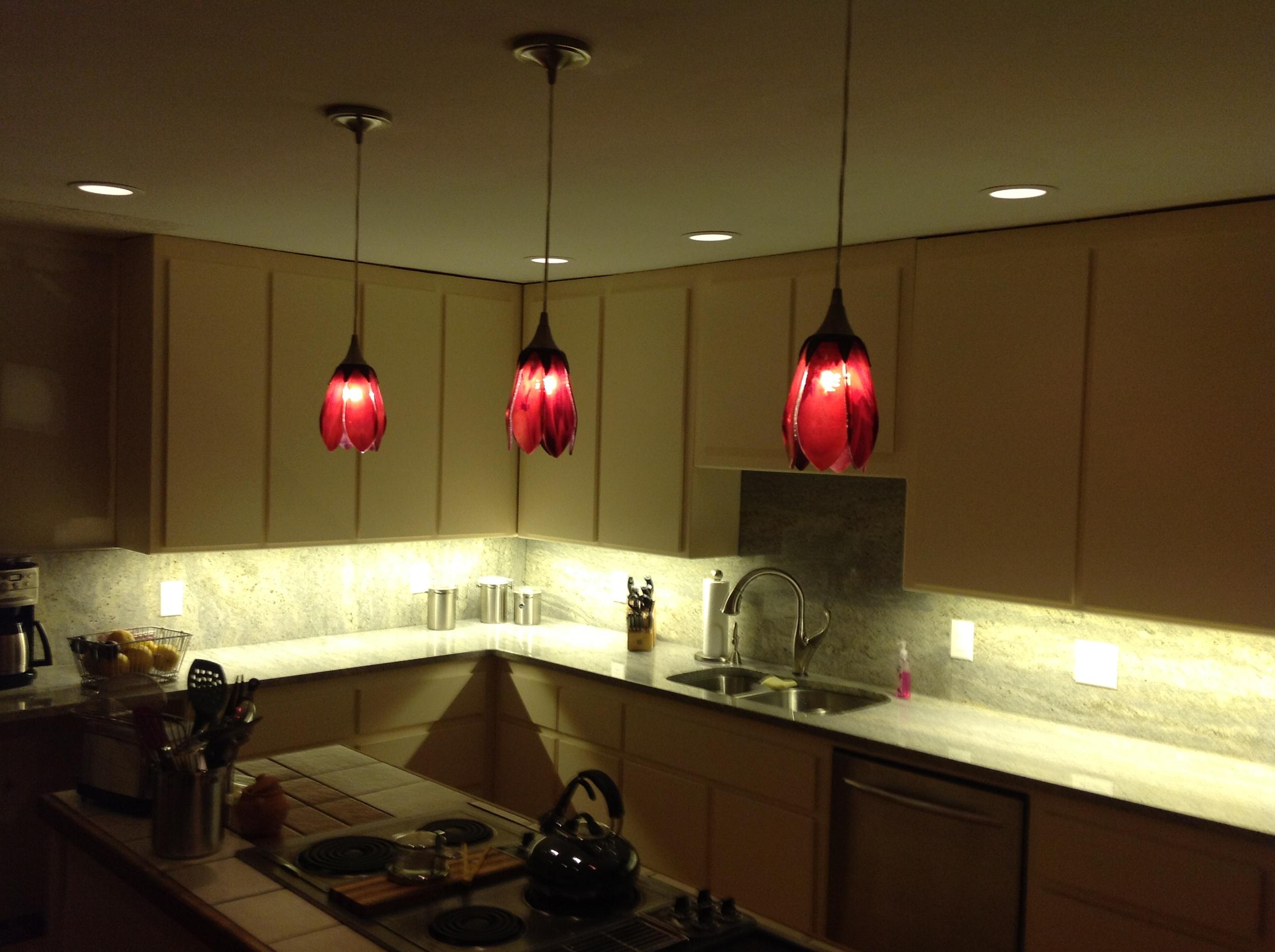 Cranberry Tulip Pendant Lights