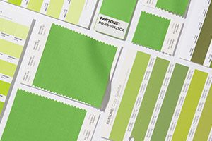 2017 Color of the Year - Kale Pantone