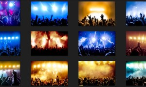Cheering Crowd Rock Concert Images Free Download