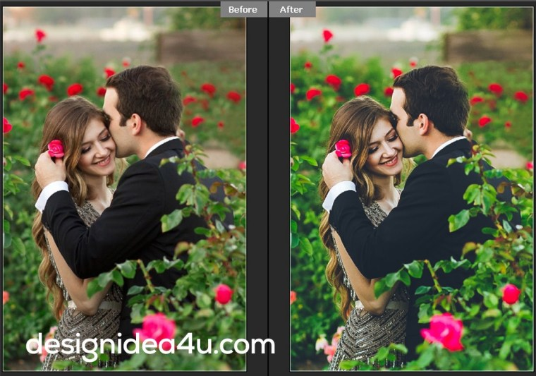 Best 30 Wedding Classic Presets Free Download