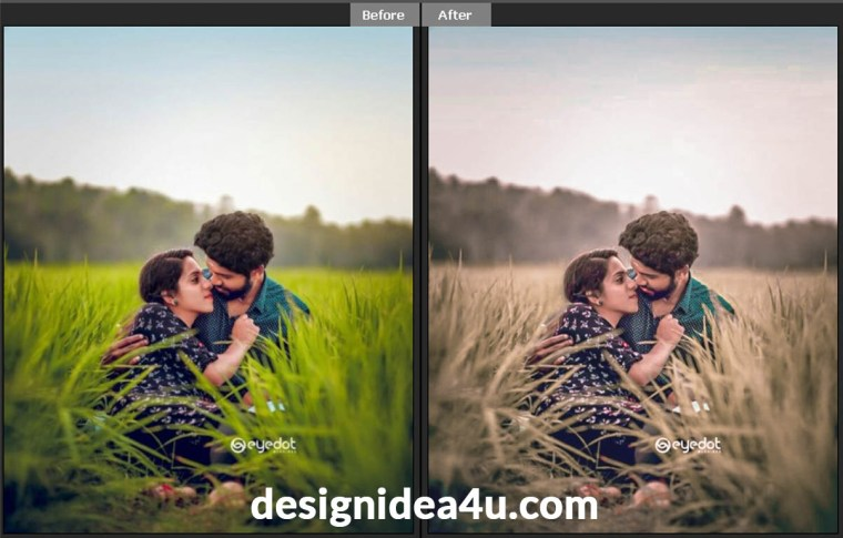 Top 5 Rose Gold Lightroom Desktop Presets Free Download