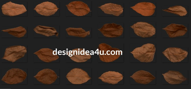 160 Autumn Rose Leaves Photo Overlays Bundle Free Download