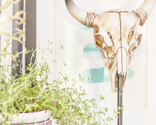 diy cow skull sculpture
