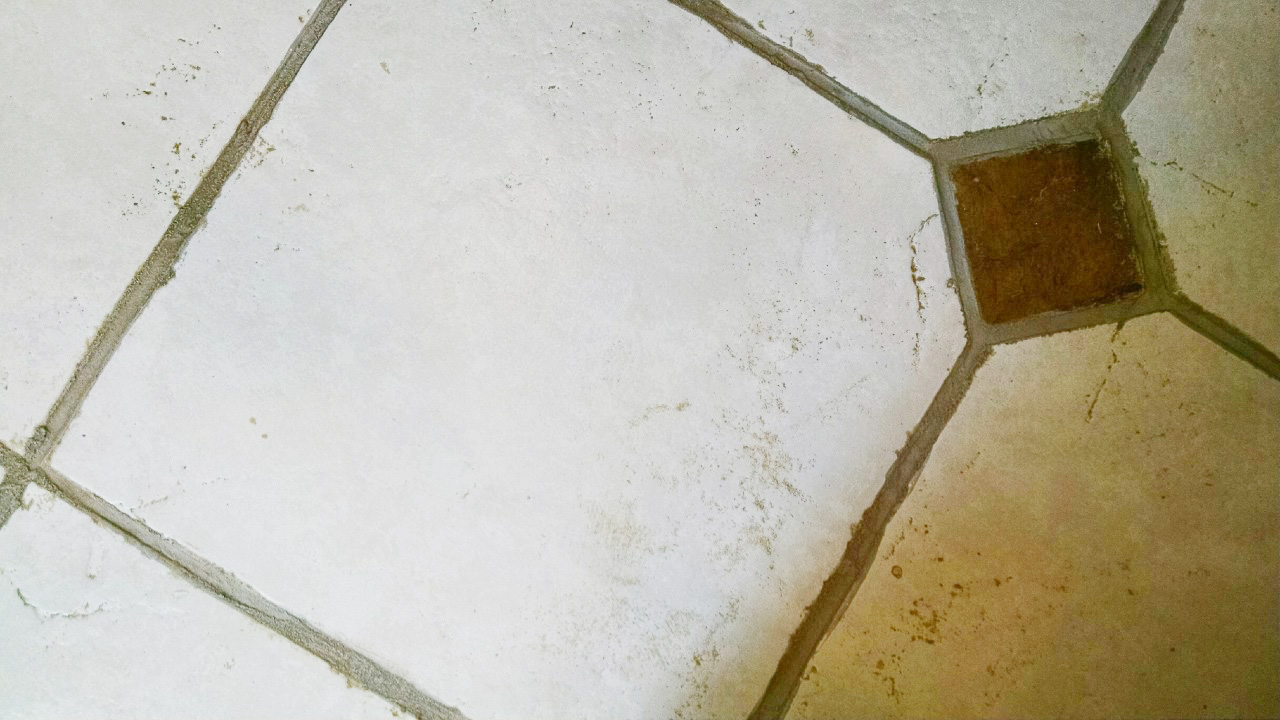 The easiest way to clean filthy neglected tile flooring how to clean dirty tile floors that were neglected dailygadgetfo Images