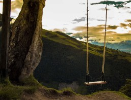Swing over a cliff At Casa Del Arbol