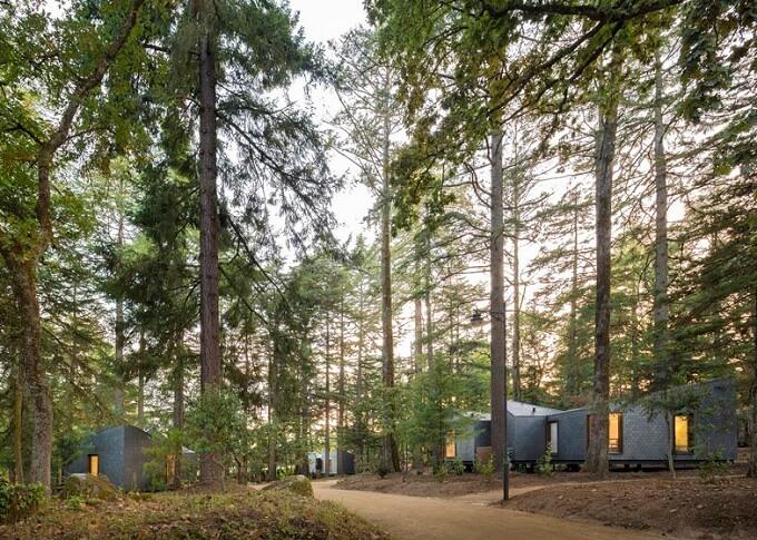 Eco-friendly-woodland-cabins-01
