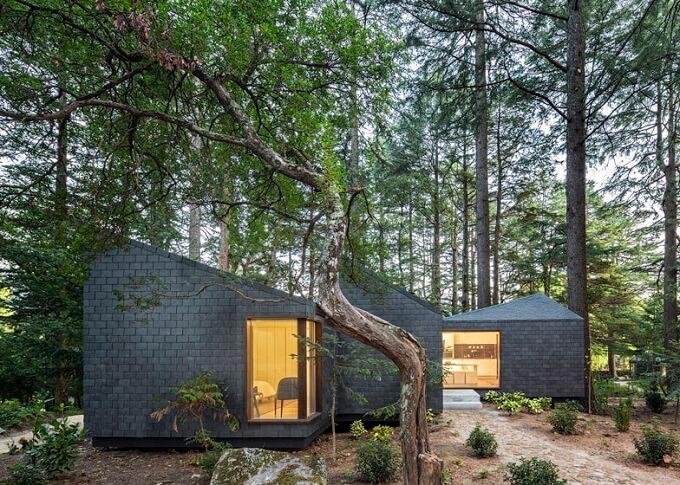 Woodland-cabins-in-Pedras-Salgadas