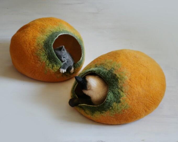 Pumpkin-cat-cocoon