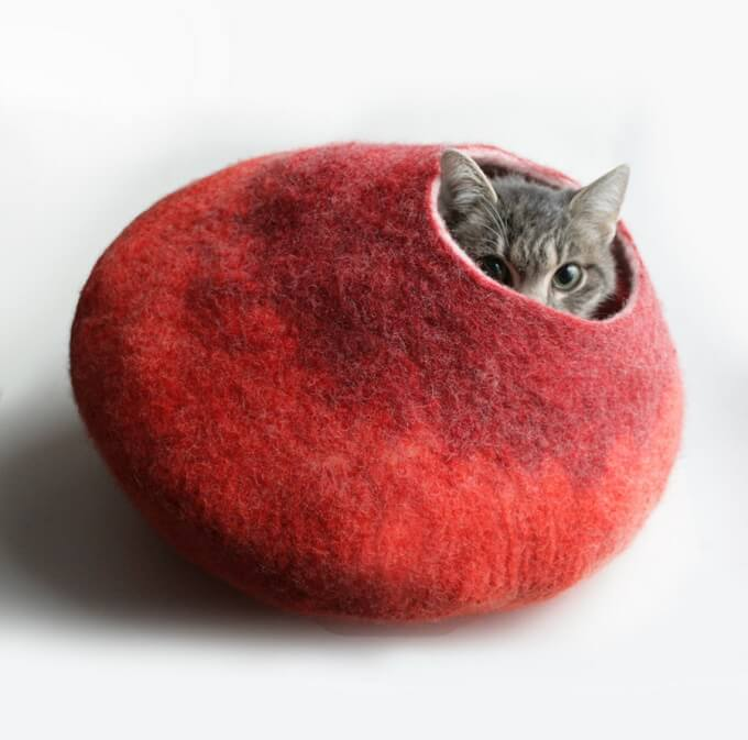 Red-cat-bubble