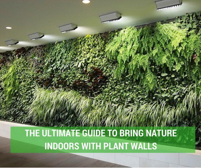 Plant-Walls