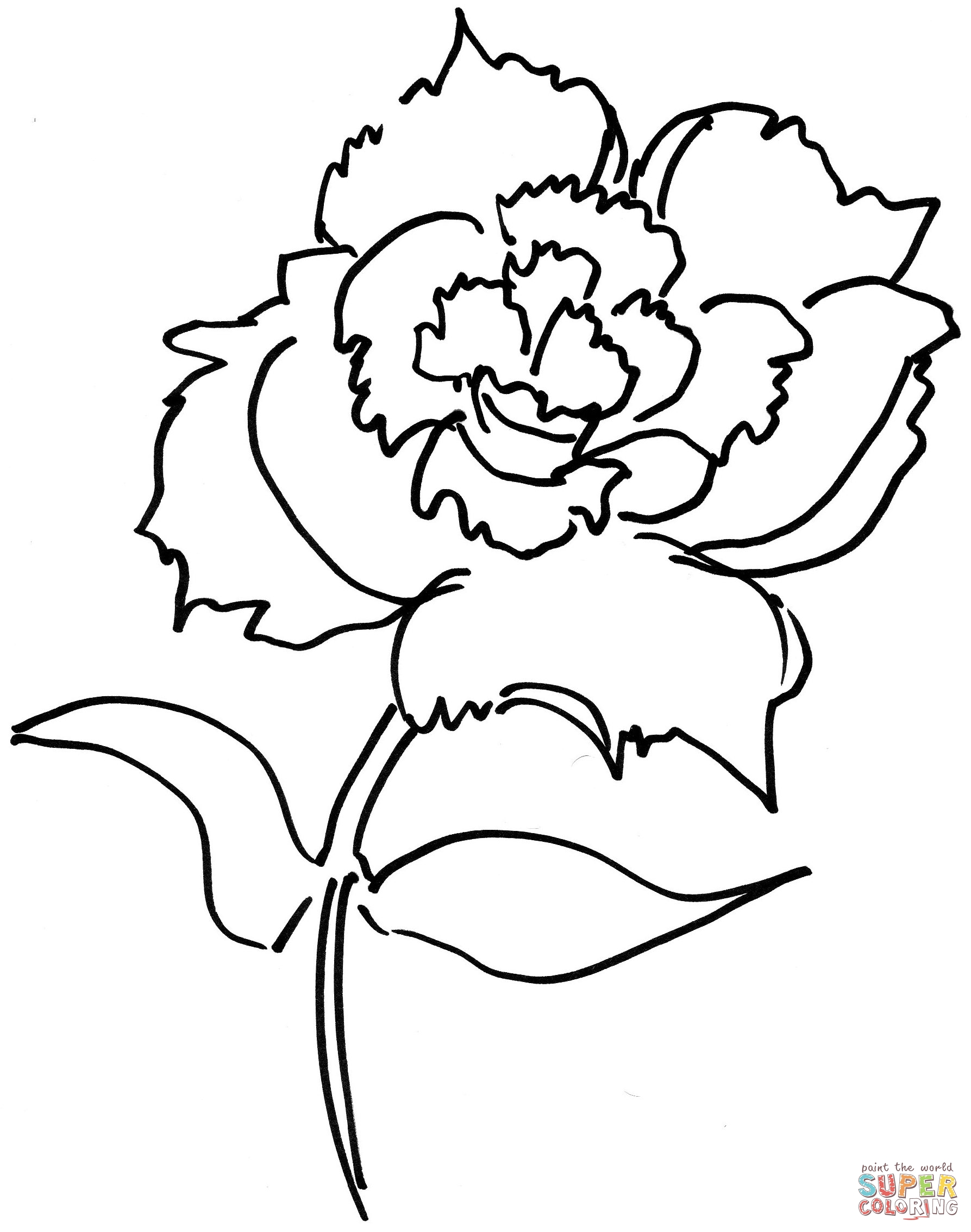 Carnation Coloring Download Carnation Coloring For Free