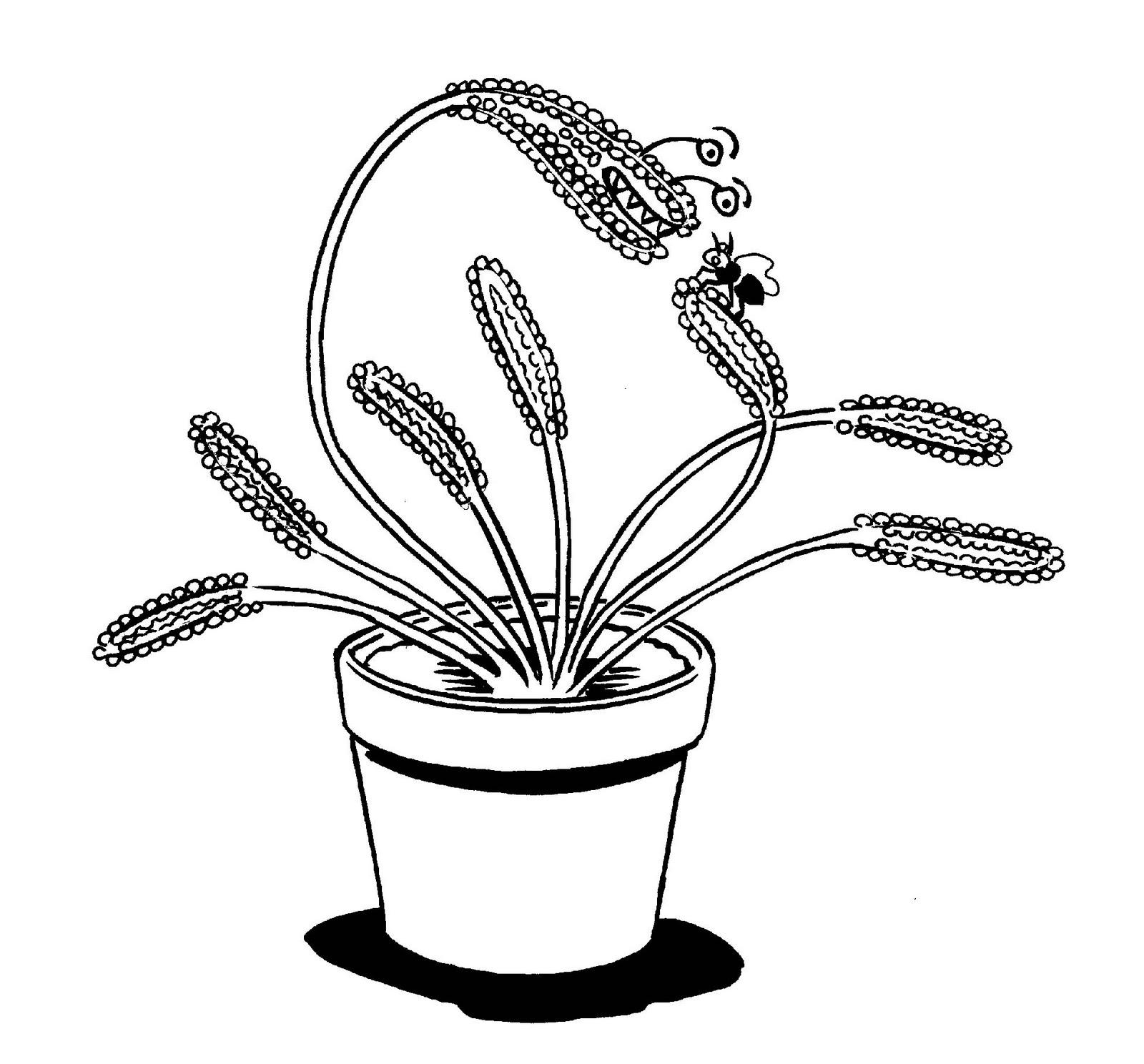 Carnivorous Plant Coloring Download Carnivorous Plant