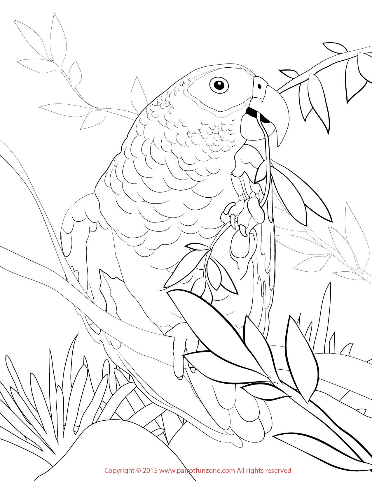 Download Grey Coloring For Free