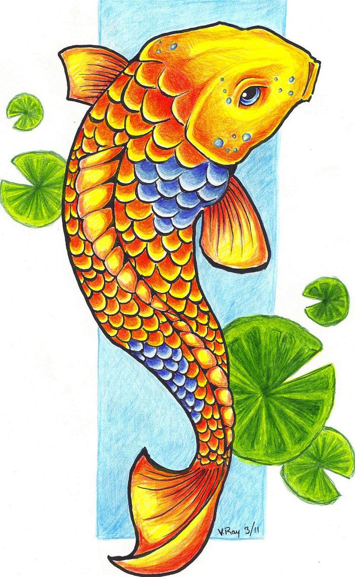 Coy Fish Clipart