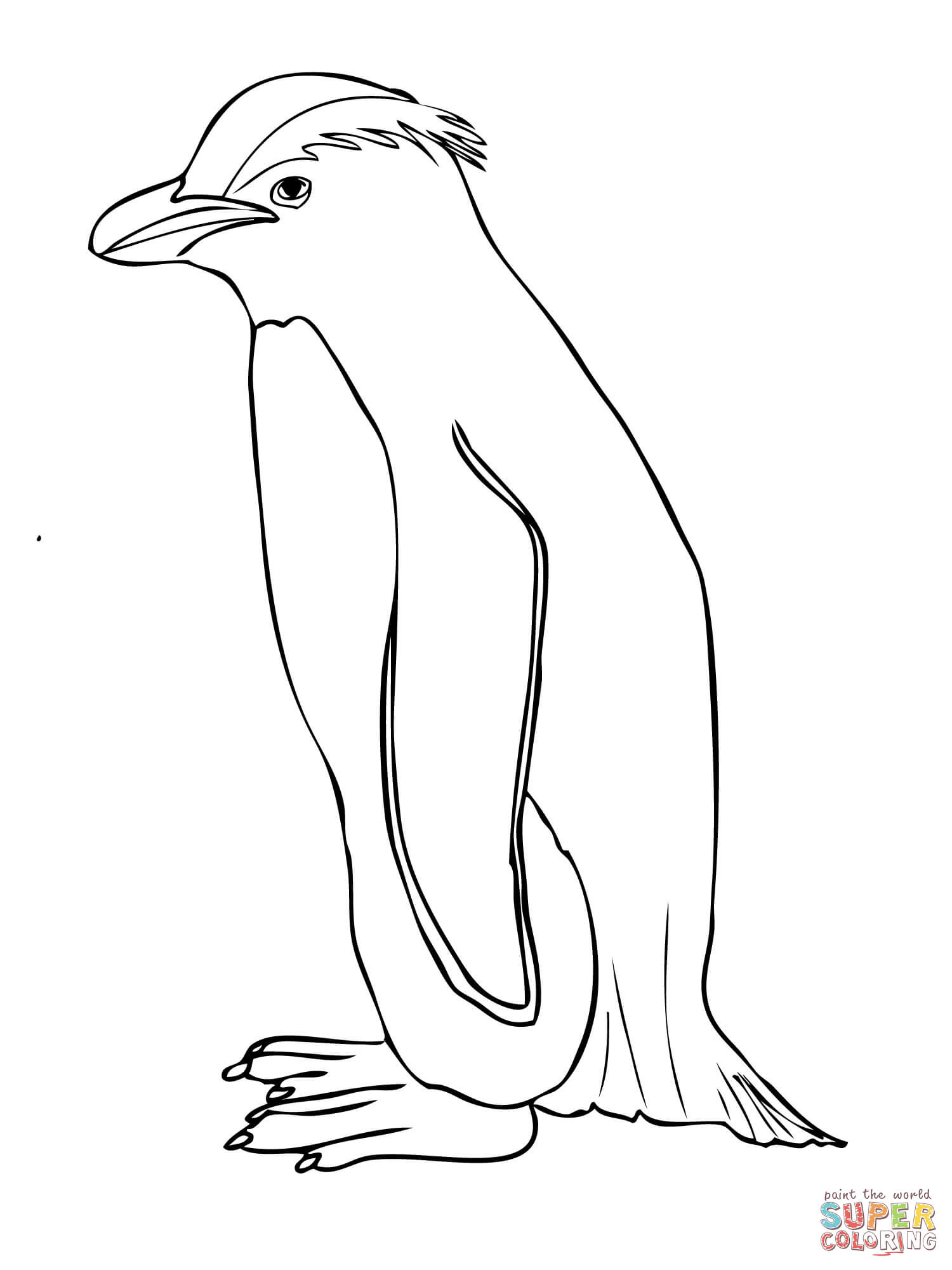 Rockhopper Penguin Coloring Download Rockhopper Penguin