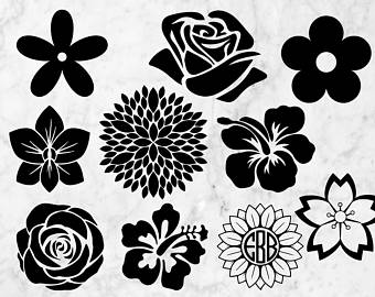 Download White Flower svg, Download White Flower svg for free 2019