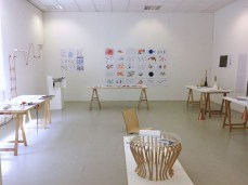 Design Luminy Louise-Coste-Dnap-6 Louise Coste - Dnap 2016 Archives Diplômes Dnap 2016  Louise Coste