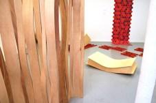 Design Luminy Expo-Diplômes-2007-13 Exposition des travaux de diplôme (Dnap & Dnsep) - 2007 Archives Diplômes Work in progress